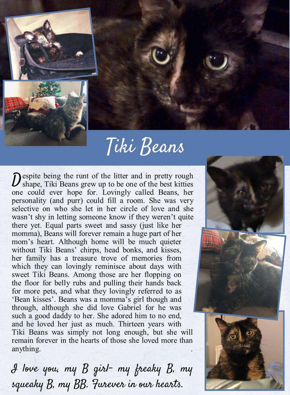 Tiki Beans Life Tail