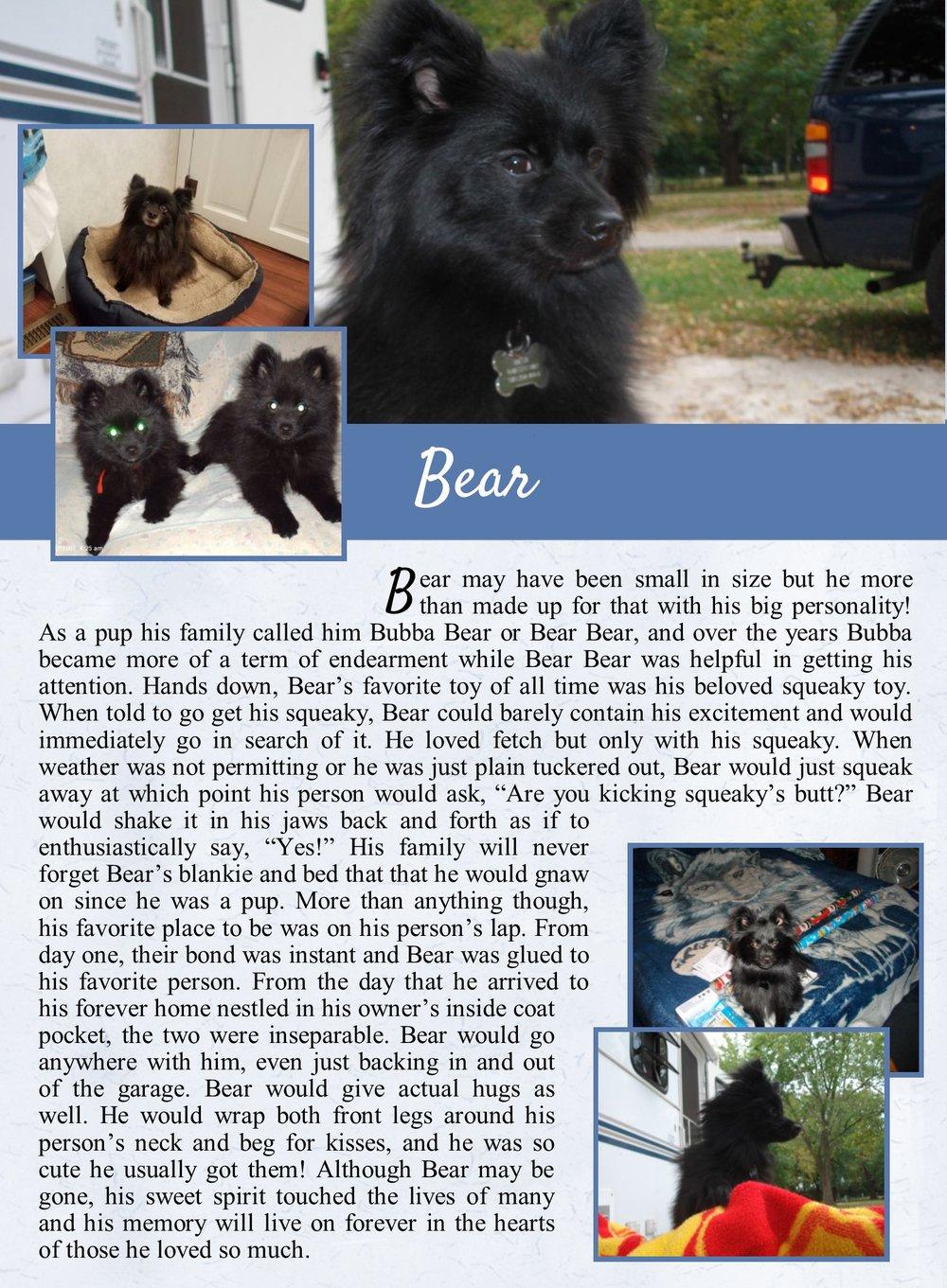 Bear's Life Tail