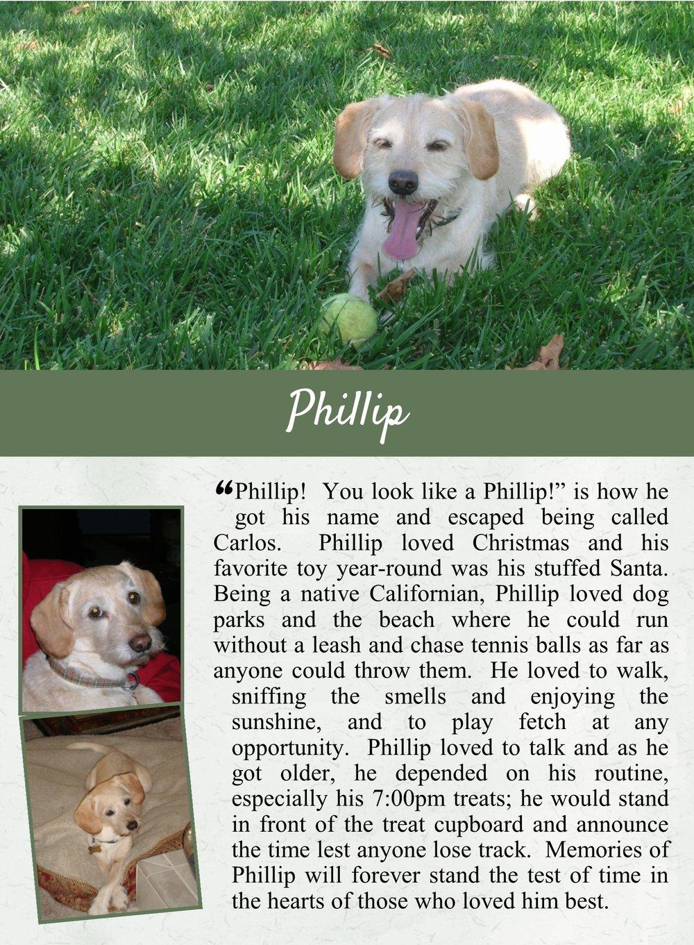 Phillip's Life Tail