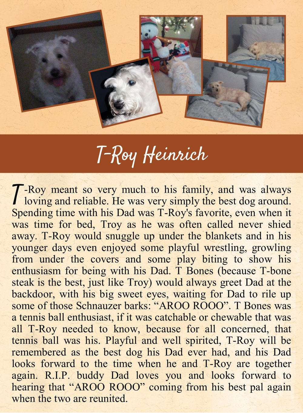 T-Roy's Life Tail