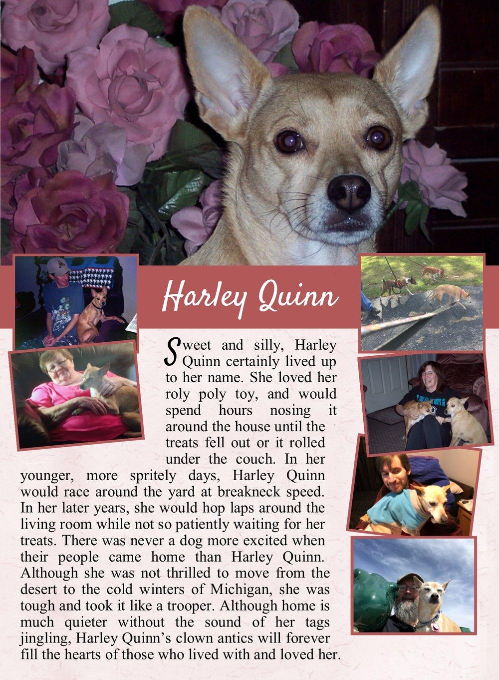 Harley's Life Tail