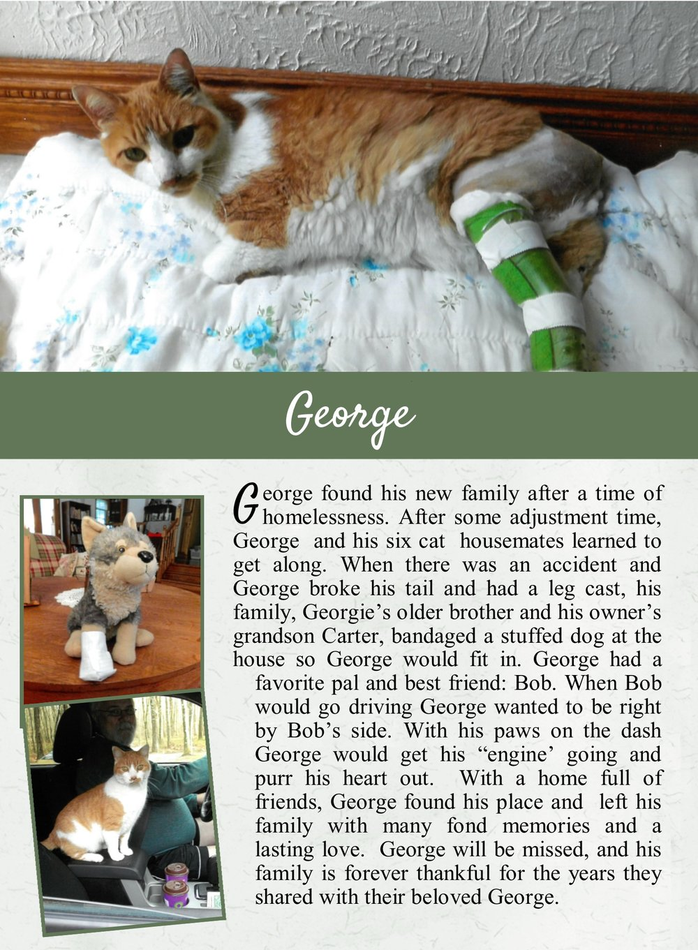 George's Life Tail