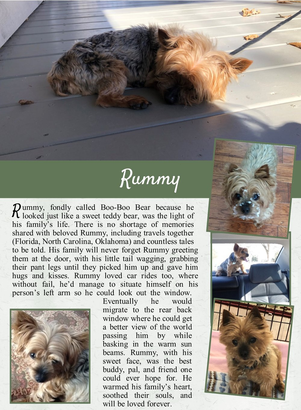 Rummy's Life Tail