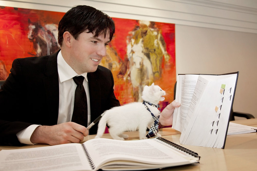 Brian Pfefferle (Defence Lawyer) poses with kittens for the 2017 Men With Cats Calendar