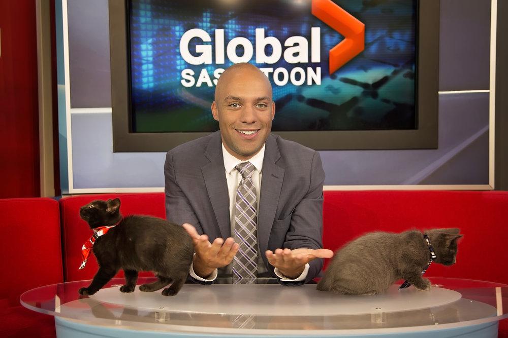 The November 2017 Men With Cats Calendar Cat Guy is Joel Senick, reporter for Global Saskatoon.