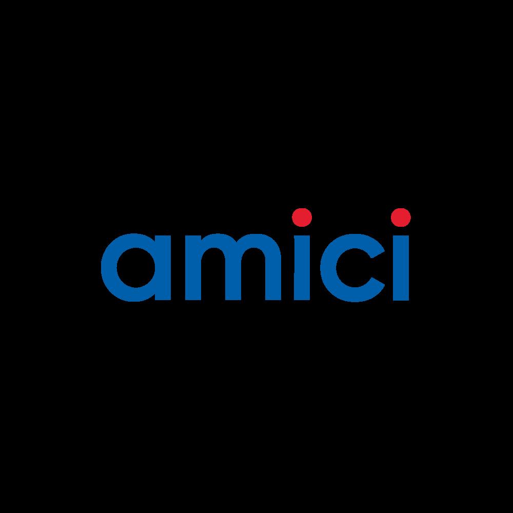 amici logo brand identity