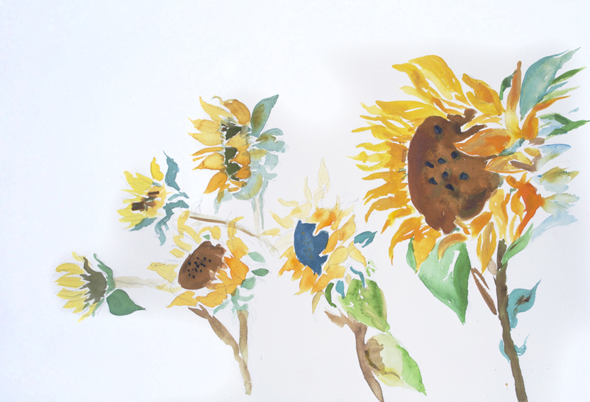 "Sunflowers 1  1995 15"" x 22.25"" Watercolor on Paper"