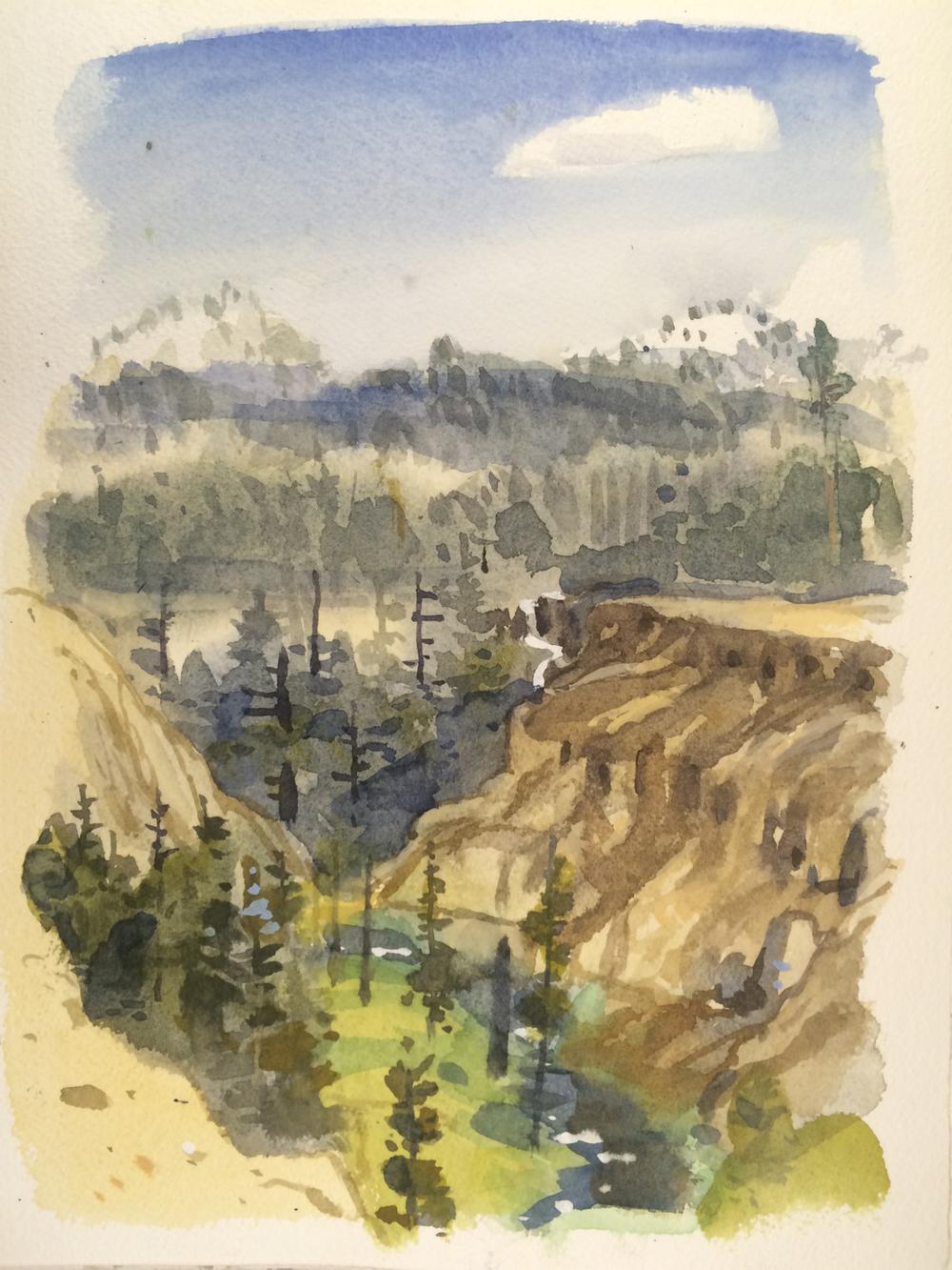 CLNP Annie's Creek (study)