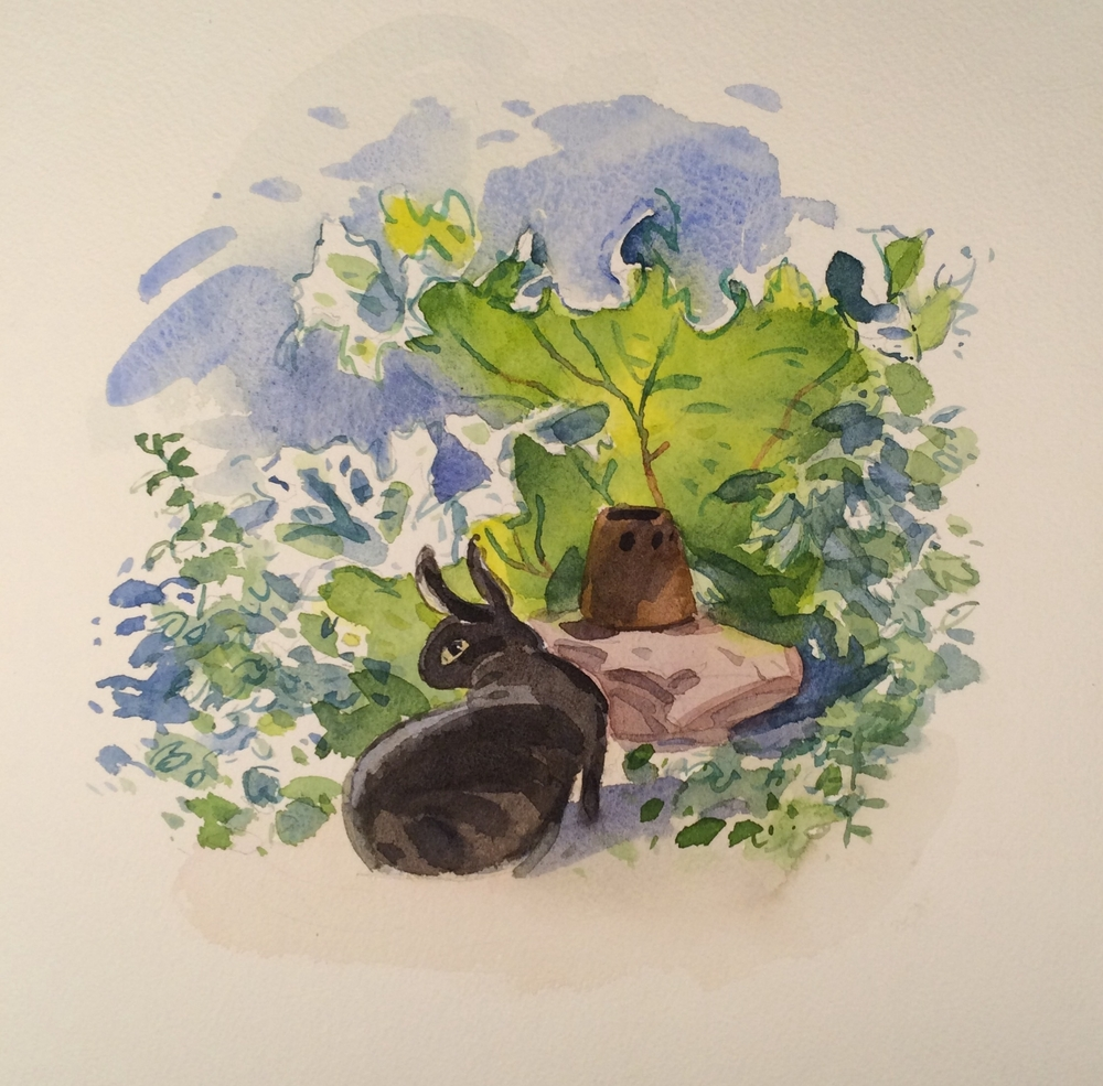 "Bruno in the rhubarb, watercolor, 9"" x 8"""