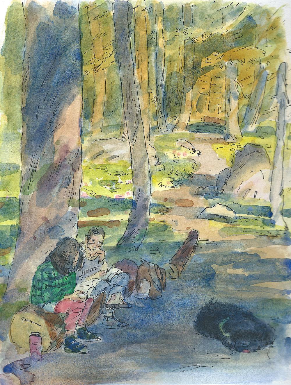 Reading at Crater Lake NP