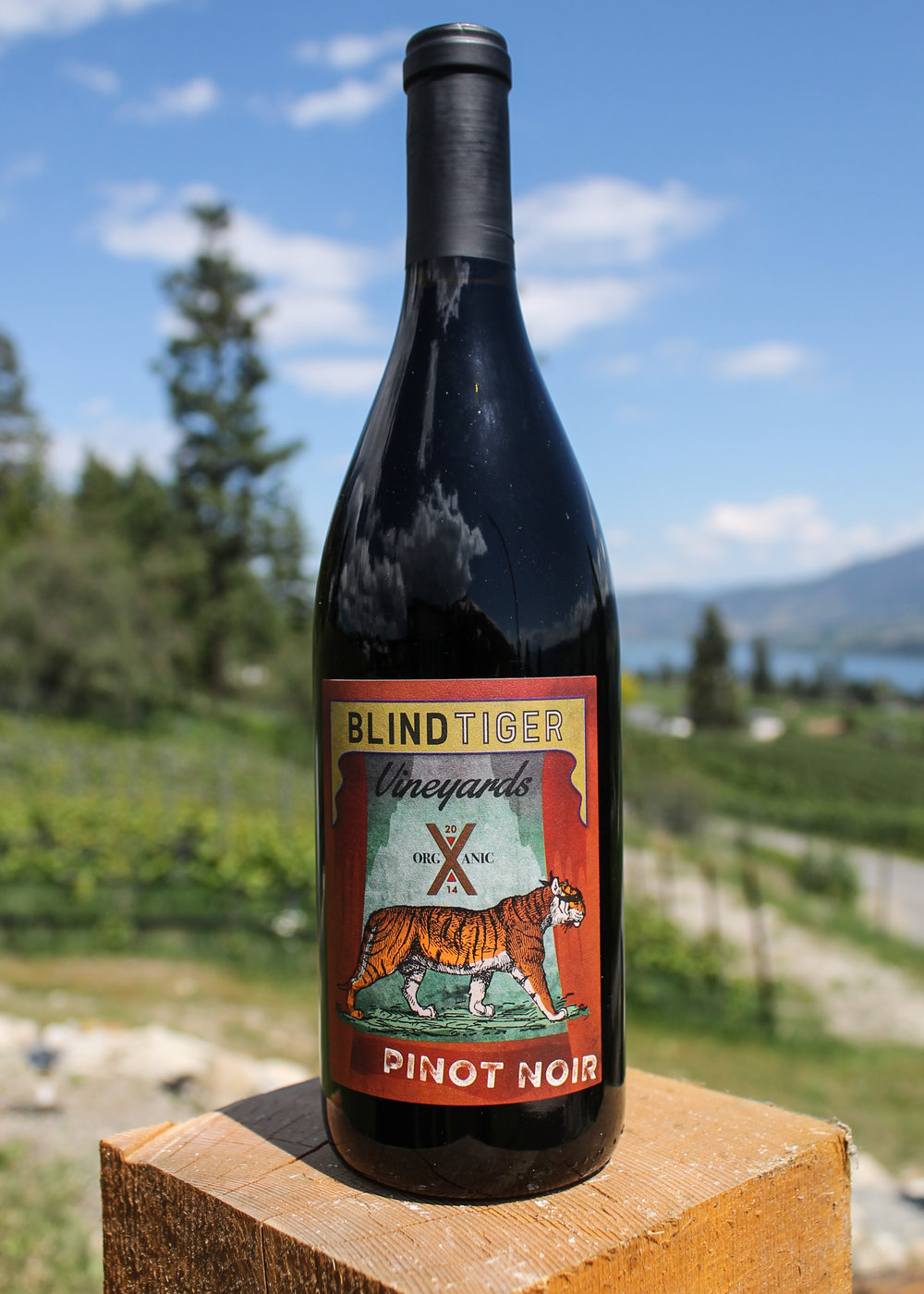 2014 Pinot Noir  - $25.95Our New World style Pinot Noir! Very fruity on the nose with black cherry, ripe strawberry, black pepper with slight notes of jasmine. Nice light tannins and cherry flavours end with a light white pepper and jasmine finish. This Pinot will pair well with summer BBQ's, Duck and Salmon. Cellar through 2018.