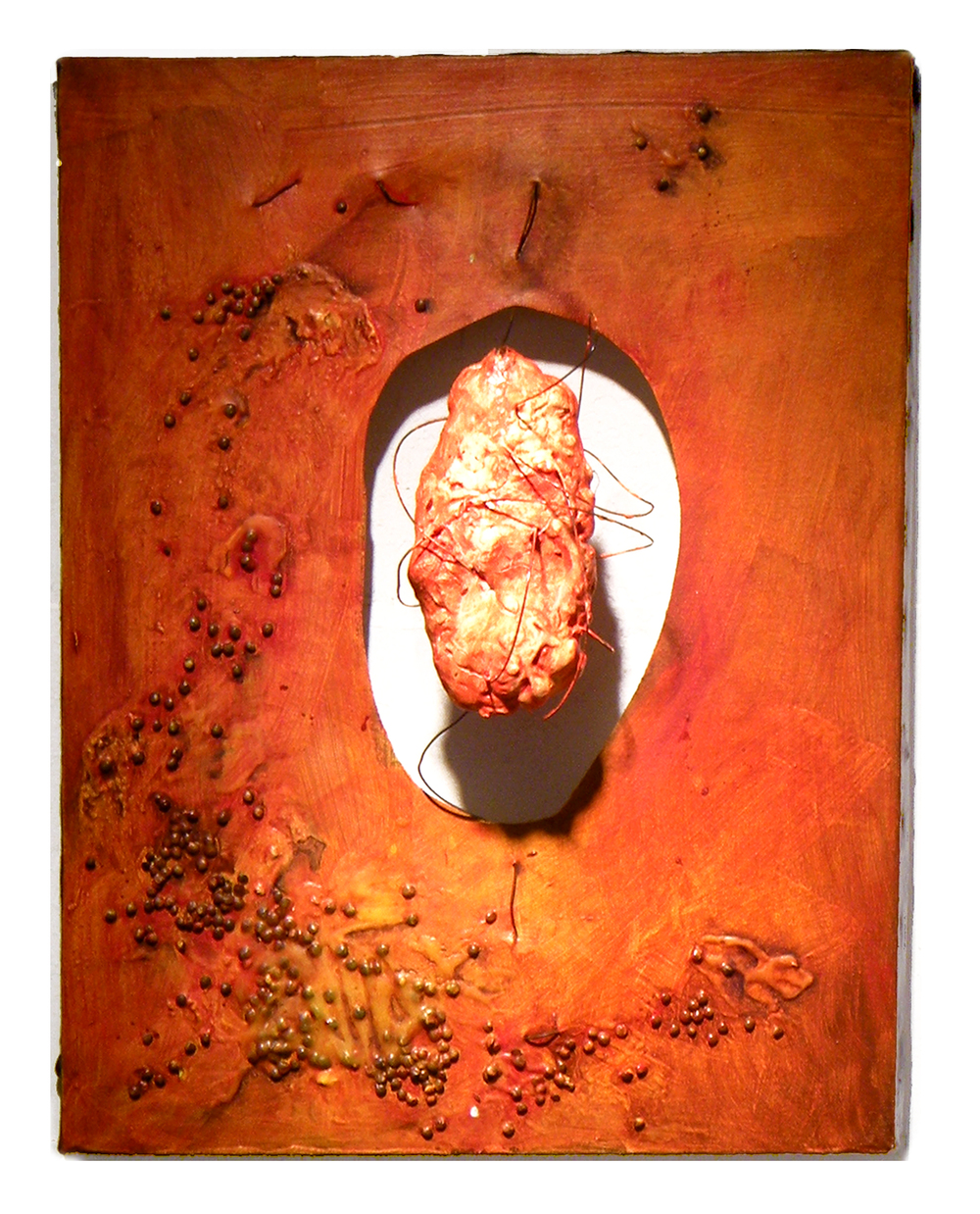 "Send Help  2009  Canvas, foam, wire, lentils, acrylic and oil paint  18"" x 24"""
