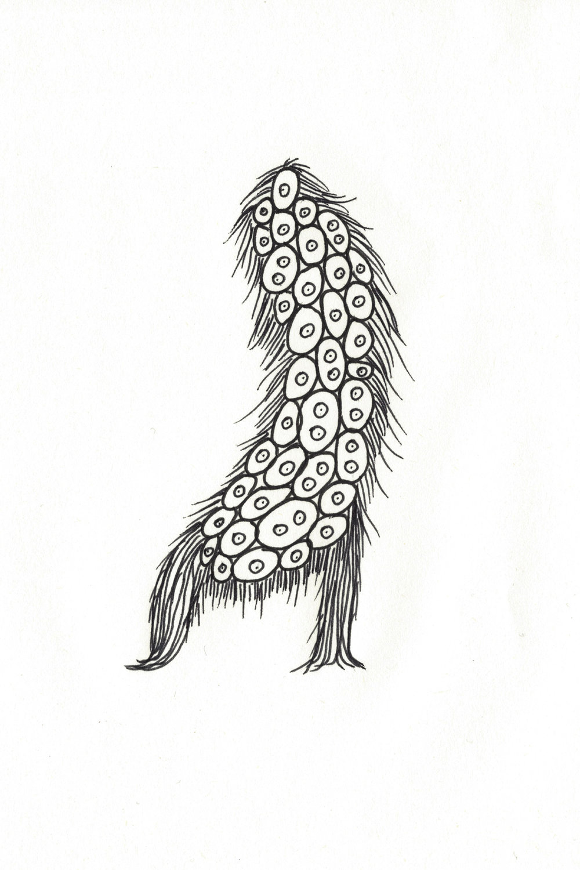 MicrobrialDynamic_3.jpg