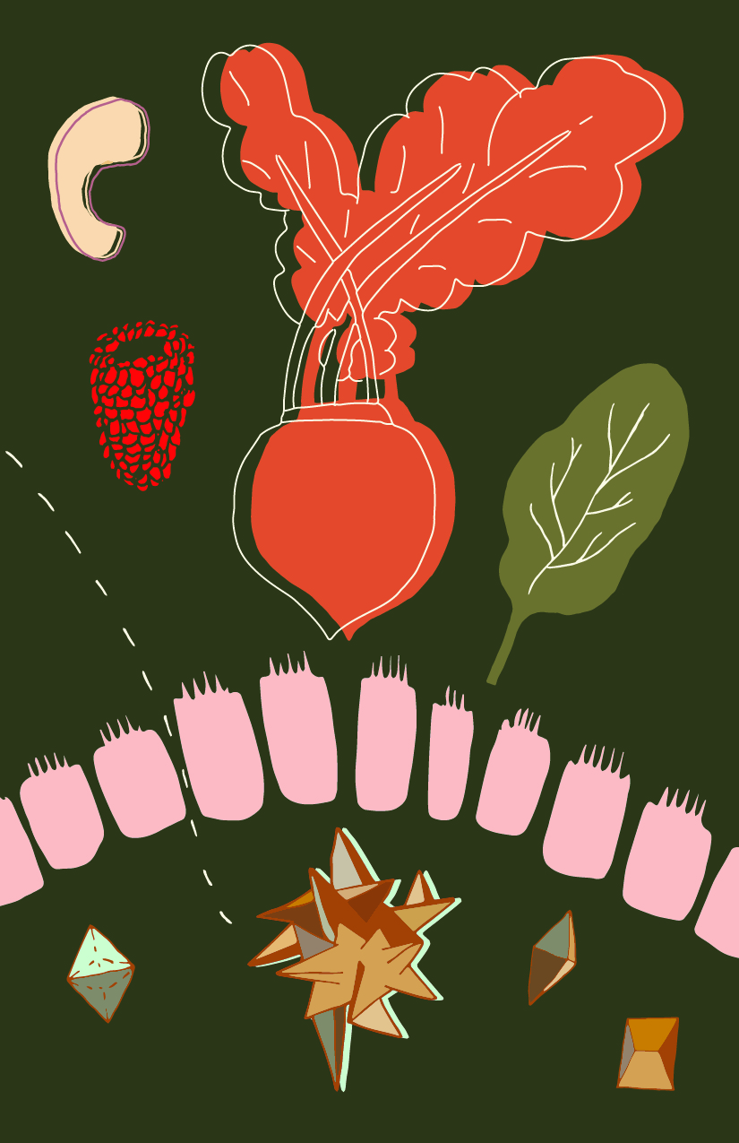 Illustration about food, leaky gut,  and oxalates