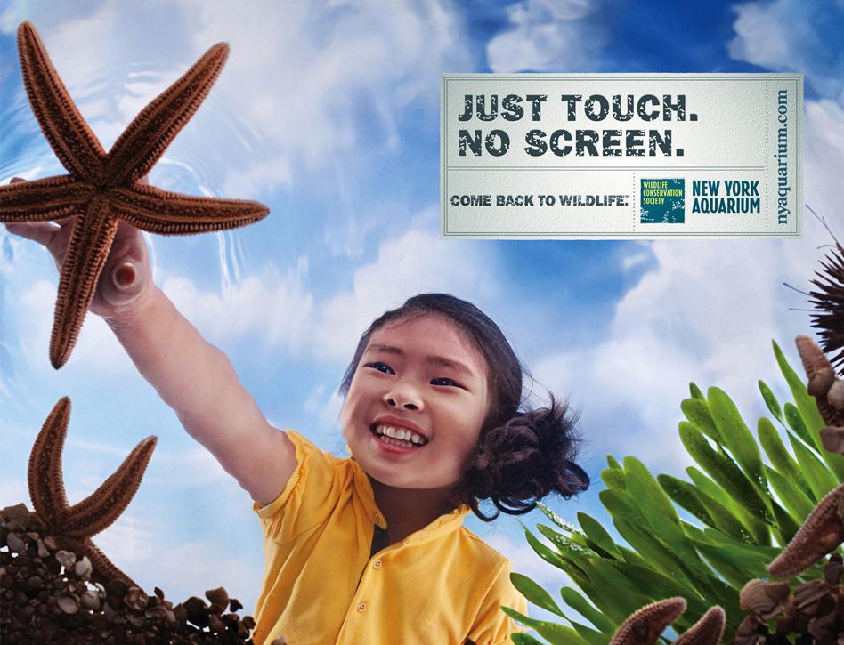 NY Aquarium - Touch
