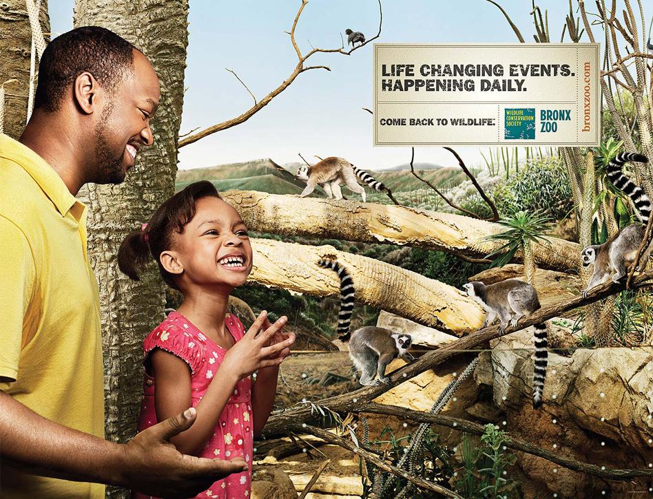 Bronx Zoo - Lemur