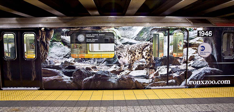 Bronx Zoo - Subway Wrap 1