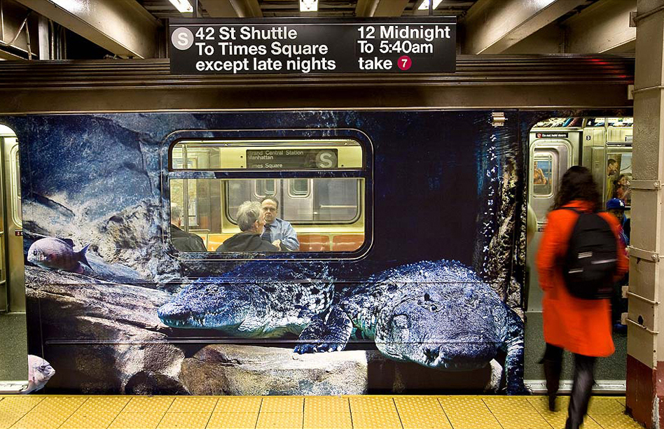 Bronx Zoo - Subway Wrap