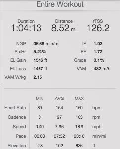 My TrainingPeaks summary from yesterday's run.
