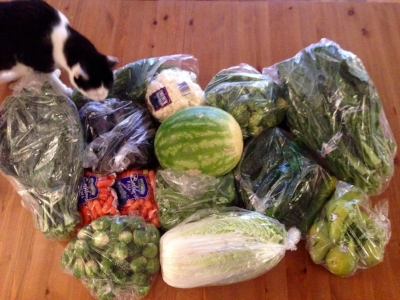 Who says eating healthily is expensive?  All this for $27. Lacinato kale x 2; eggplant x 2, dill x 2; cauliflower, broccoli florets, collard greens x 2; baby carrots x 2; watermelon, cucumbers x 12; Brussels sprouts, cilantro x 3; Napa cabbage, organic pears x 6. (Diego is inspecting my produce haul.)