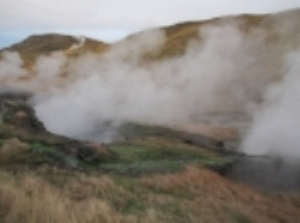 Steam vents. Water was hotter than boiling in some places, which included warning signs for the oblivious.
