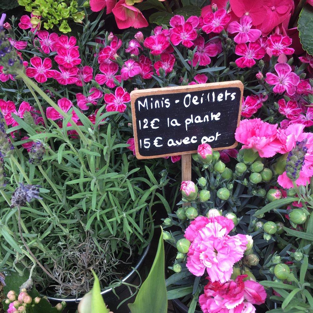 Les fleurs. Beauty is not a luxury in France; it's a necessity