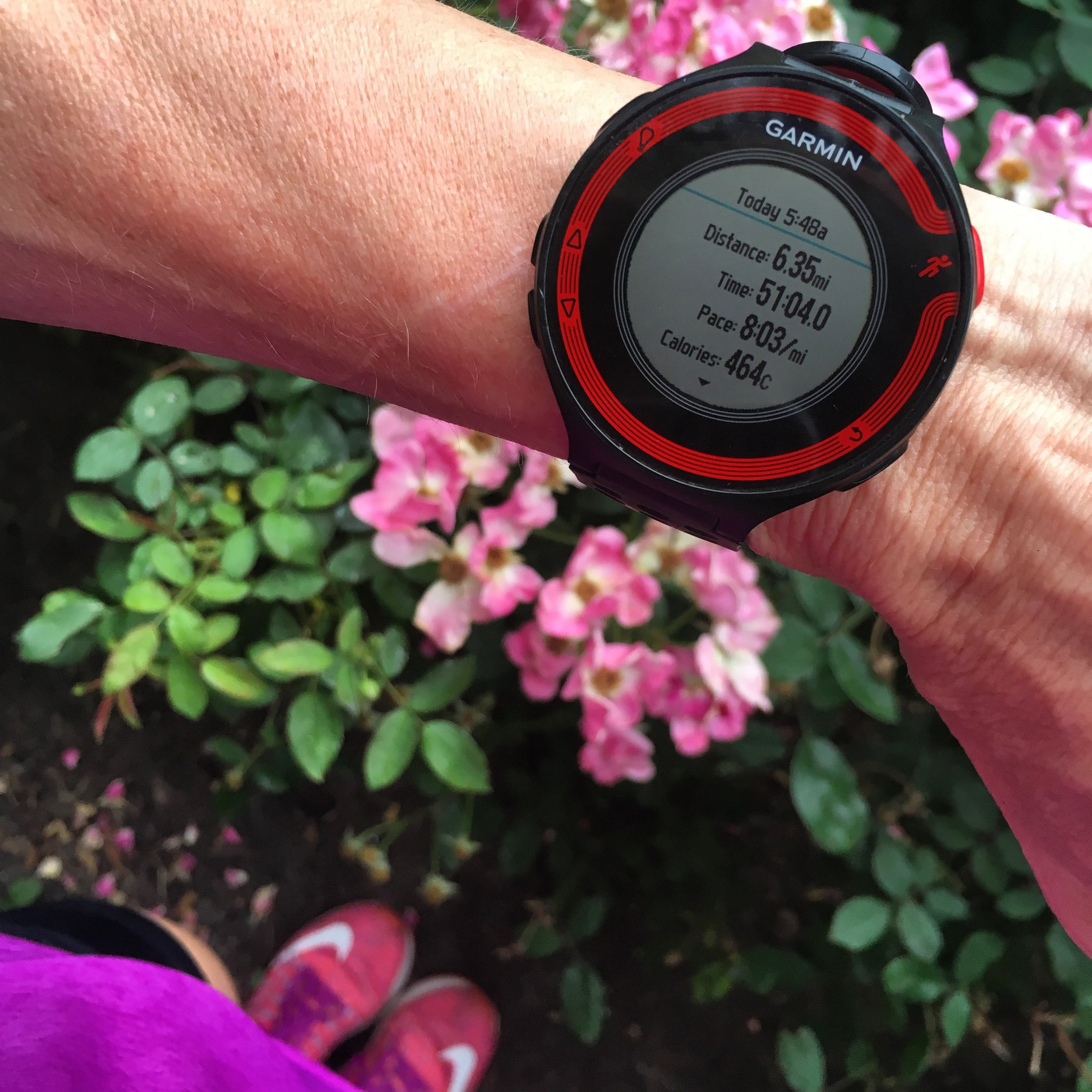 First tempo run of the training cycle