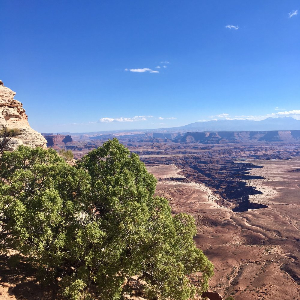 Canyonlands – my favorite national park so far. and I hardly got to see much of it