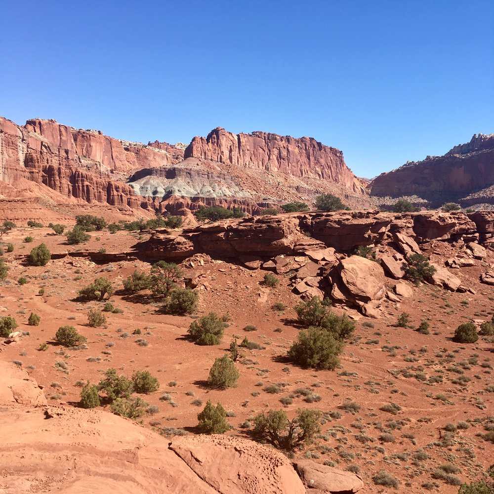 Capitol Reef had been on my wish list for awhile.