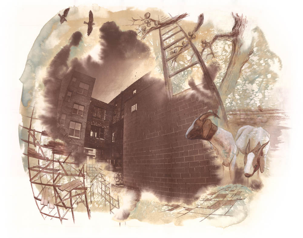 Building and Rebuilding, Naomi Friend (Cyanotype, Van Dyke, Watercolor, 2013)