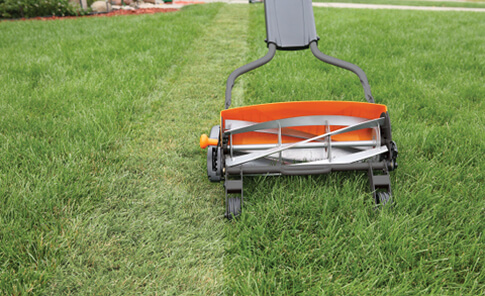 Reel Mower.jpg