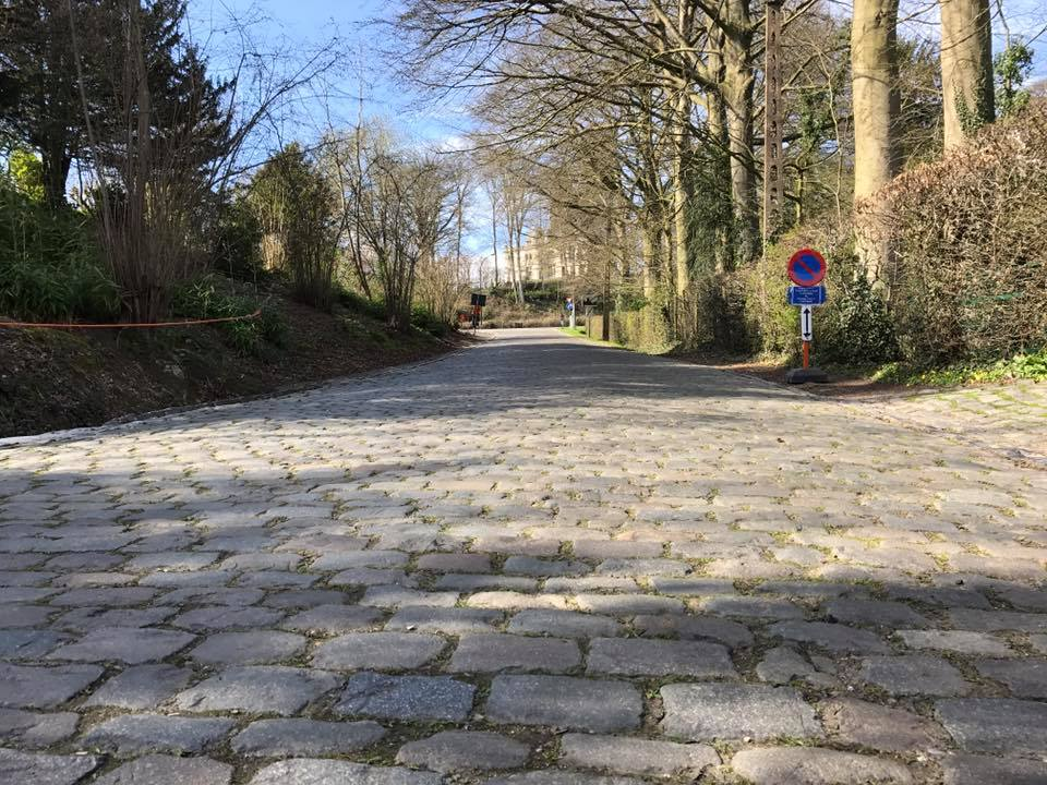 Cobbles eye view...
