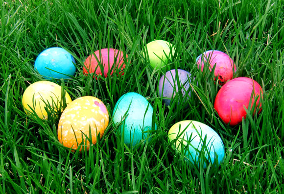 Easter-Egg-Hunt.jpg