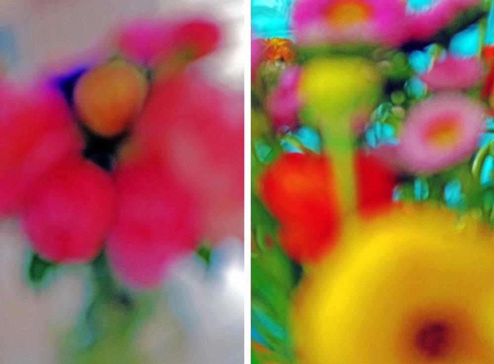 flowers 2 up x.jpg