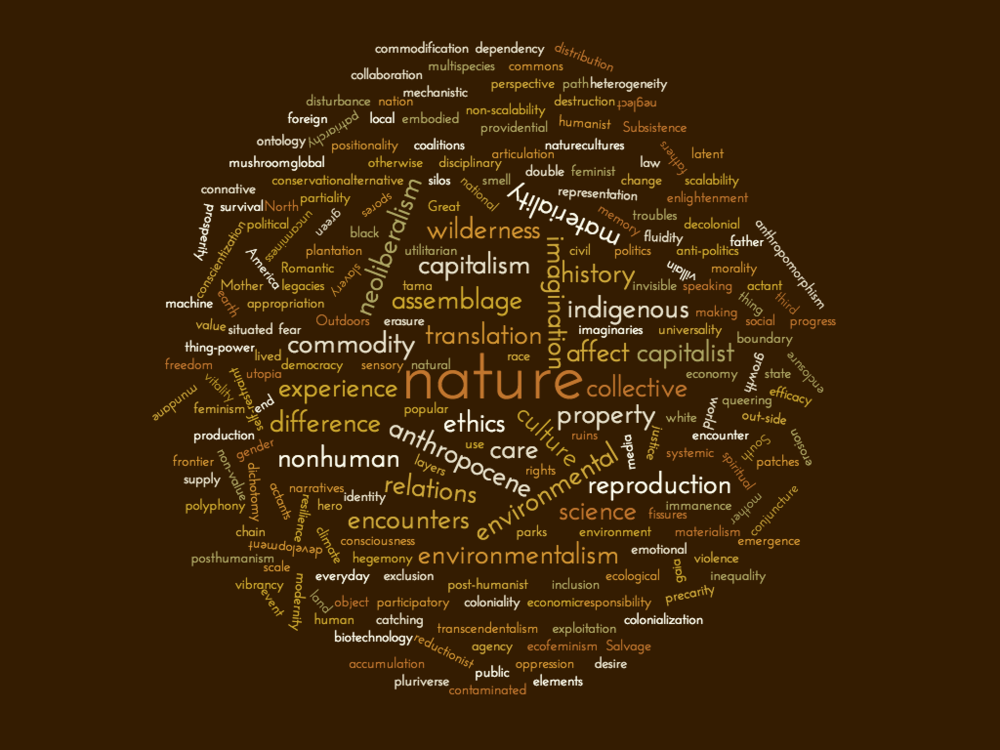 Beyond Political Ecology