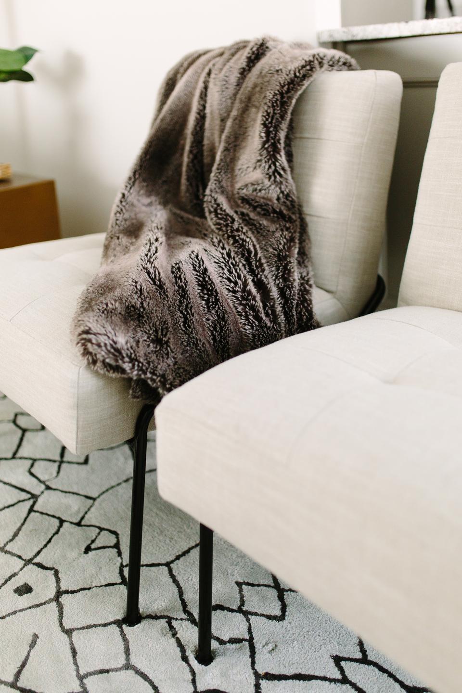 Contemporary cozy living room details - Akin Design Studio