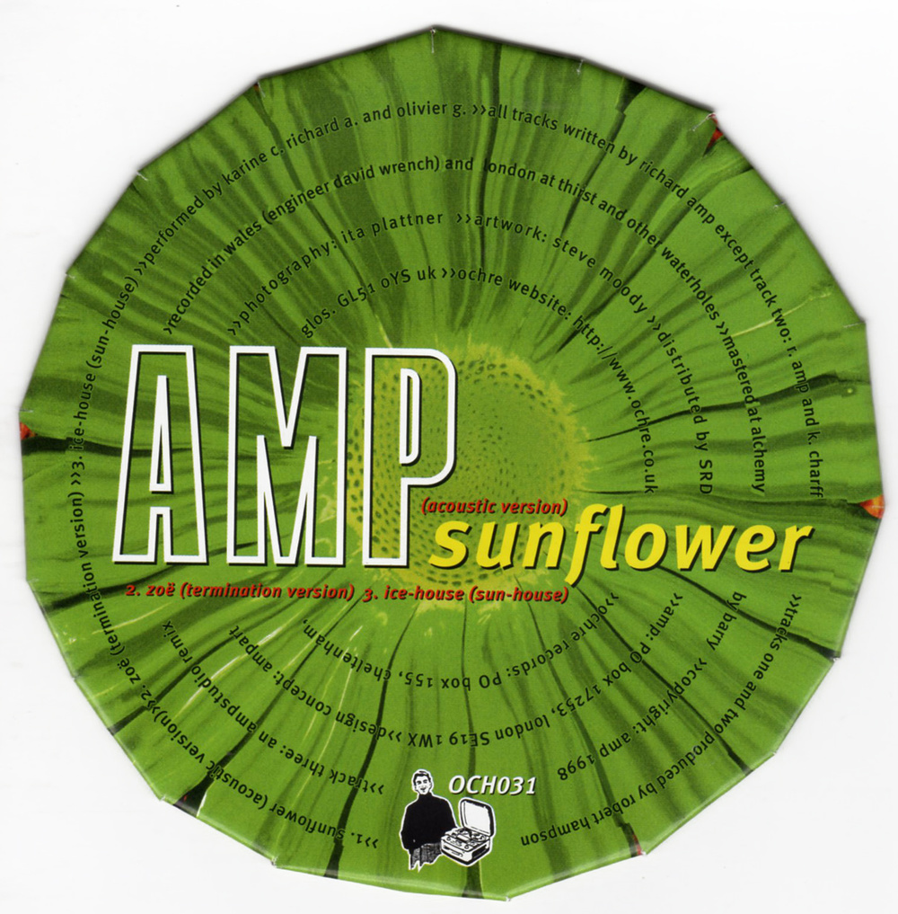 amp-sunflower.jpg