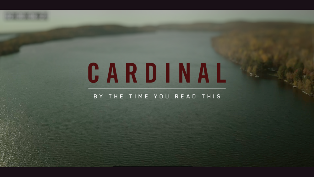 CardinalS3Intro Alternate Logo Plate 2.png