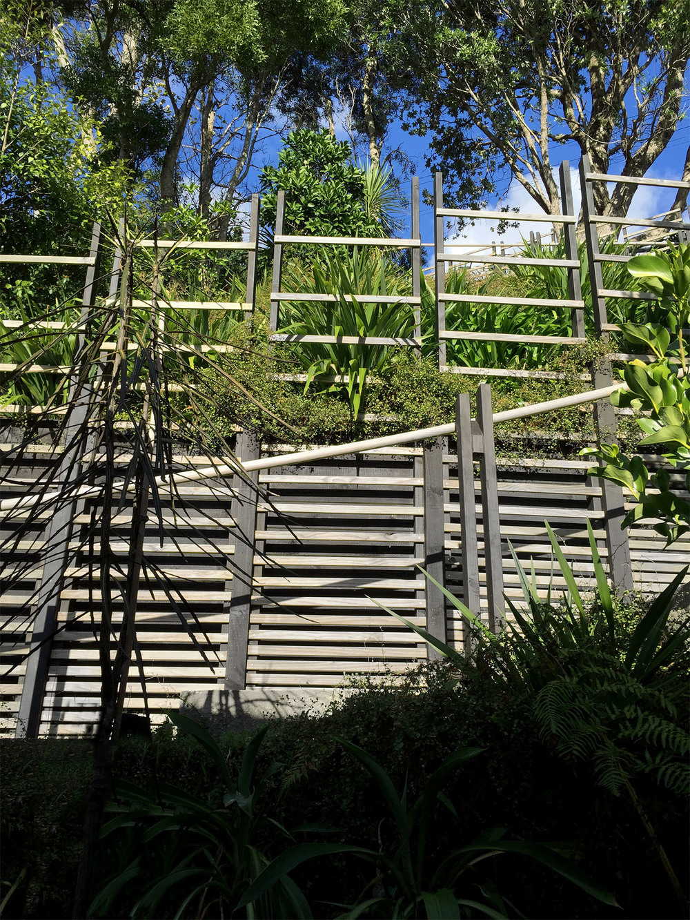 Garden_Steps_Wellington_3aa.jpg