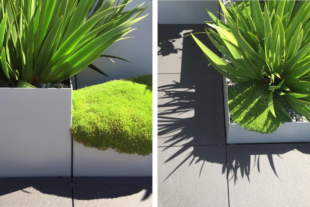 Rooftop_garden_landscape.jpg