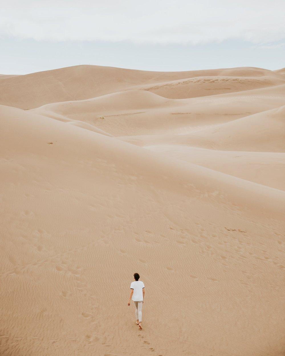 desert trail.jpg