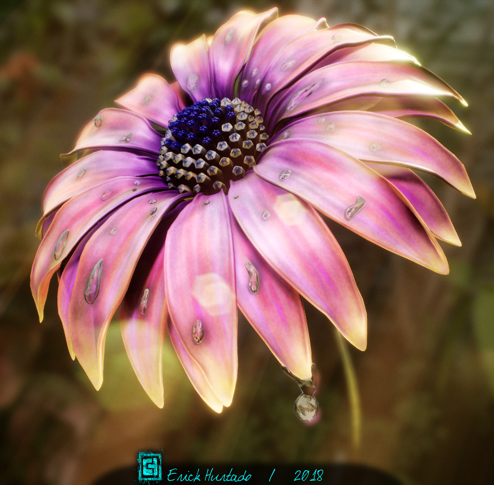 Flower_01_Sunrise.png