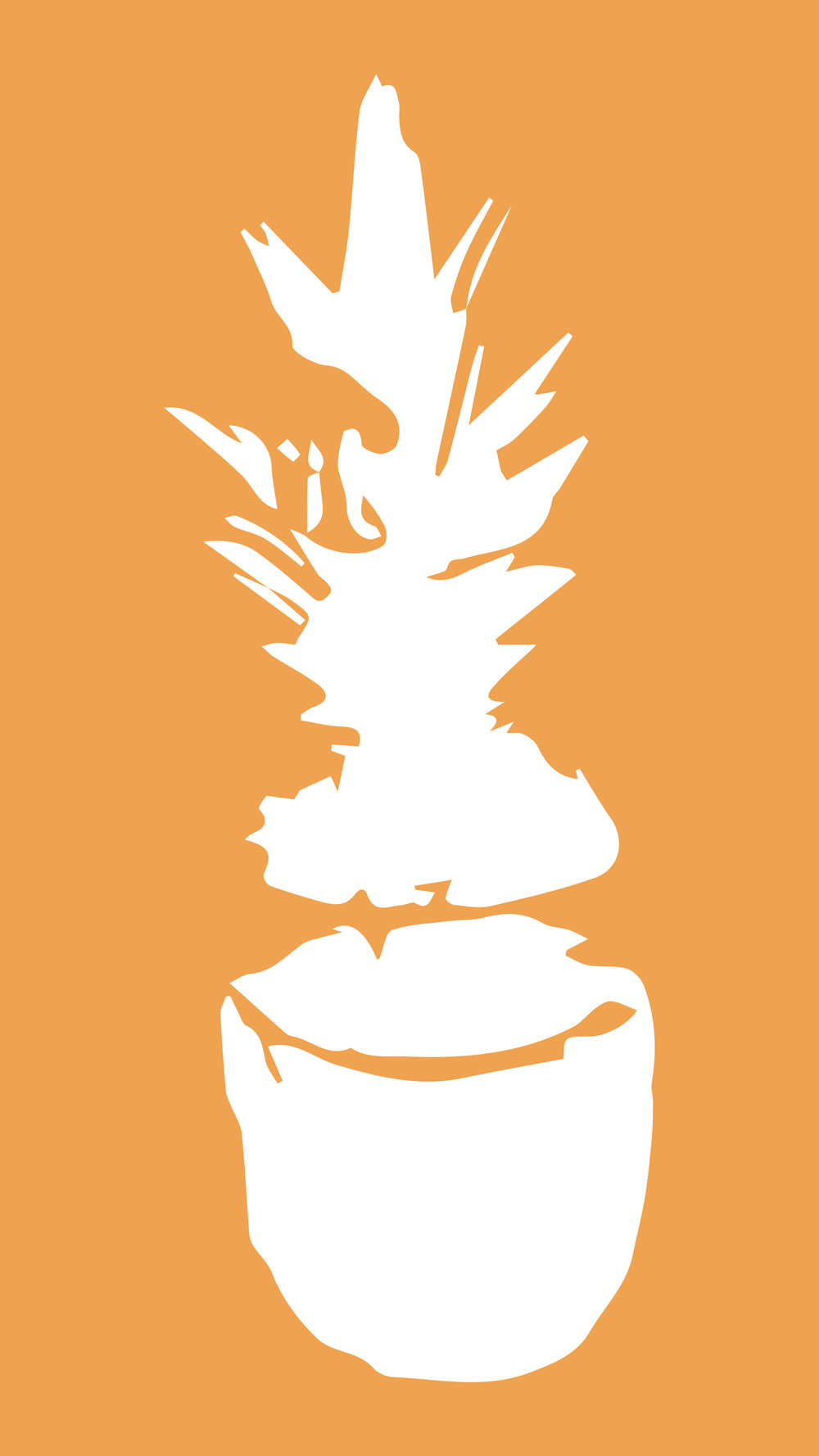 Orange Pineapple Phone Wallpaper