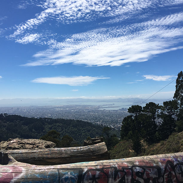 A view of the Bay Area from Tilden Park