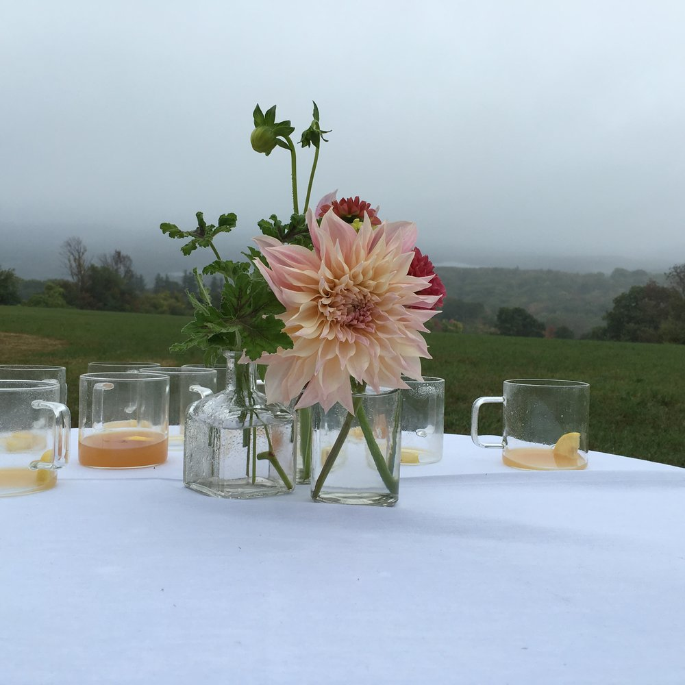Cooled down hot cider with rum and flowers picked in the fields by Gabriella's sister earlier that day.