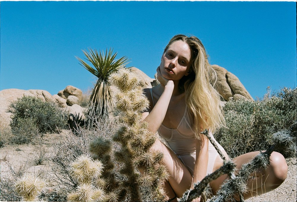 JoshuaTree_analogue_USA_sep.2018_28-min.jpg