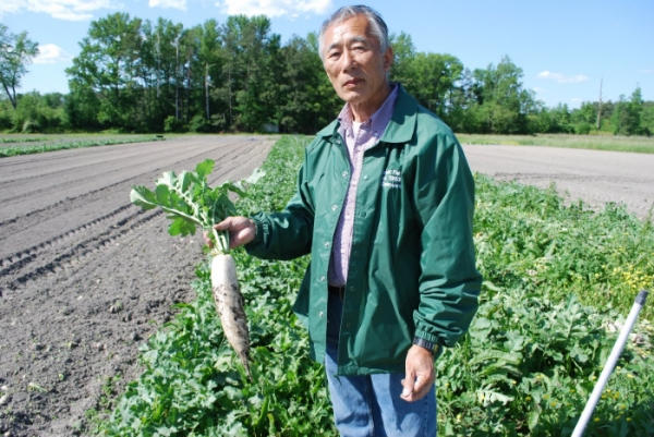 Suzuki Farm has been in operation since 1983 producing healthy Japanese vegetables