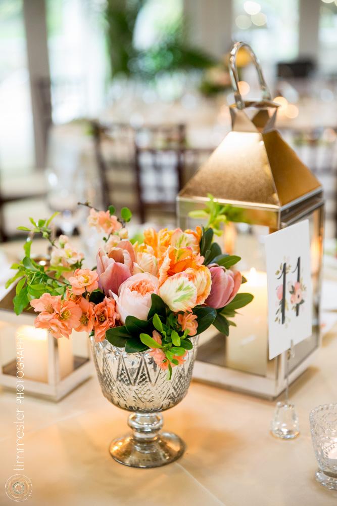 Timmester Photography_Safferson Wedding-410.jpg