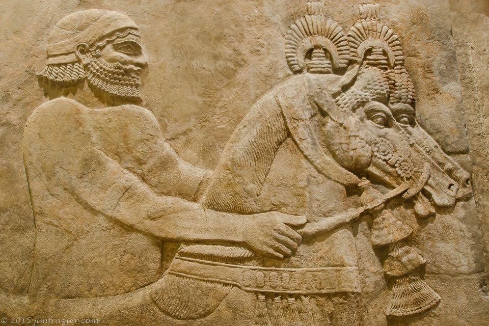 Ancient Wall Man with beard.jpg