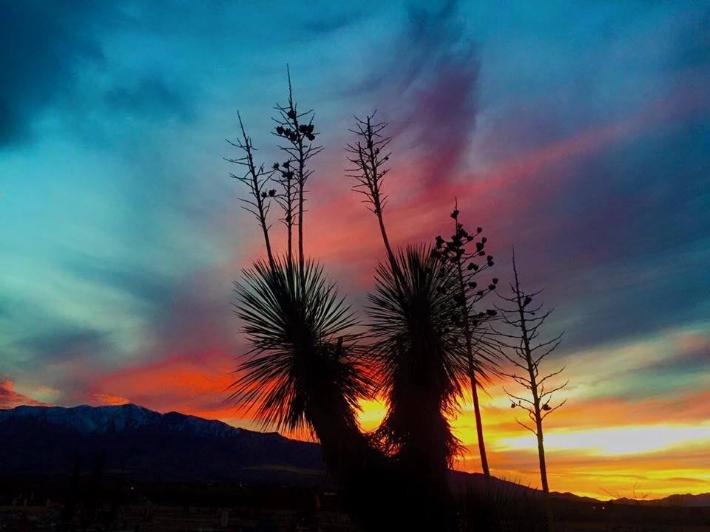 Arizona Evening Skyline